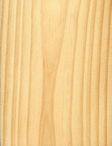 Pine Plywood Grain ~ Choosing a timber species frame hq