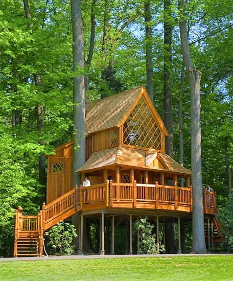 Fire Tower Engineered Timber Treehouse