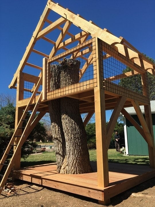 Tree house structure
